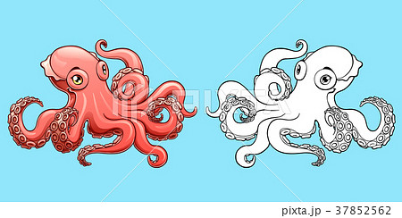 Lovely pink octopus colorful and contour 37852562