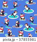 ぺんぎん ペンギン ベクタのイラスト 37855981