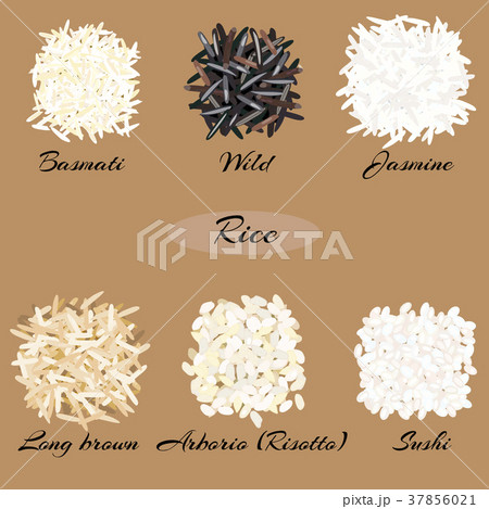 Different types of rice. 37856021