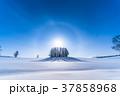 幻日環 雪原 マイルドセブンの丘の写真 37858968