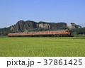 電車 列車 両毛線の写真 37861425