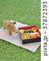 亥年~おせちピクニック~ 37872393