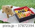 亥年~おせちピクニック~ 37872394