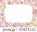 桜 フレーム ベクターのイラスト 37875121