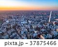《東京都》池袋の夕暮れ 37875466