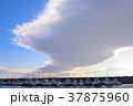 腰越漁港 港 漁船の写真 37875960