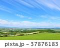 青空 空 畑の写真 37876183