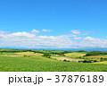 青空 空 丘の写真 37876189