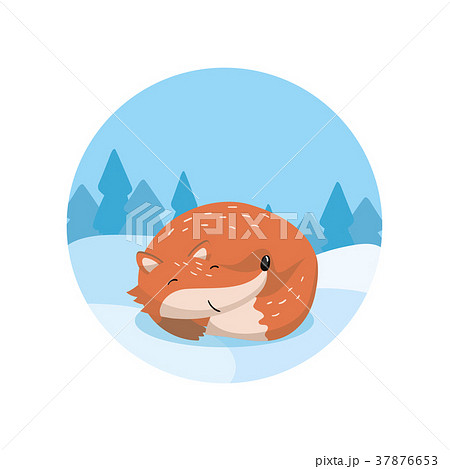 Cute red fox lying on the background of winter 37876653