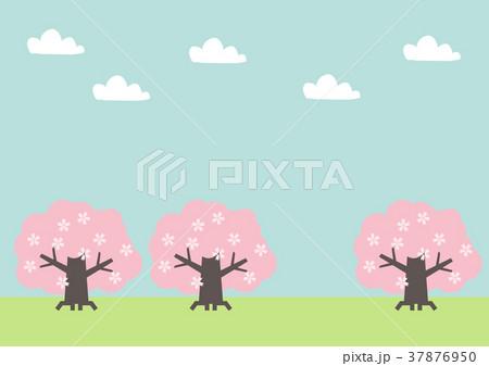 桜の木の風景素材。春の風景。春の野山の風景。 37876950