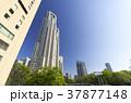 新宿 東京都庁 東京の写真 37877148