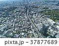 東京風景 六本木から望む 西麻布 渋谷方面 37877689