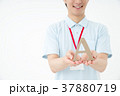 男性 人物 職員の写真 37880719