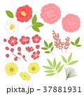 正月 植物 年賀素材のイラスト 37881931