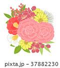 花 正月 植物のイラスト 37882230