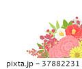 花 正月 背景のイラスト 37882231