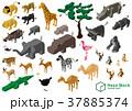 動物 ライオン キリンのイラスト 37885374