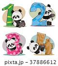 ぱんだ パンダ くまのイラスト 37886612