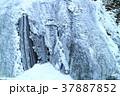 袋田の滝 氷瀑 凍結の写真 37887852