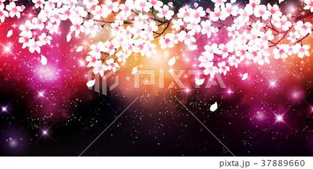 桜 春 花 背景 37889660