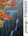 袋田の滝 37894800