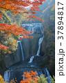 袋田の滝 37894817