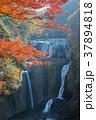 袋田の滝 37894818