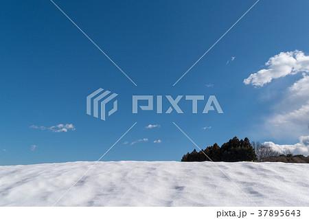 冬の晴天 37895643