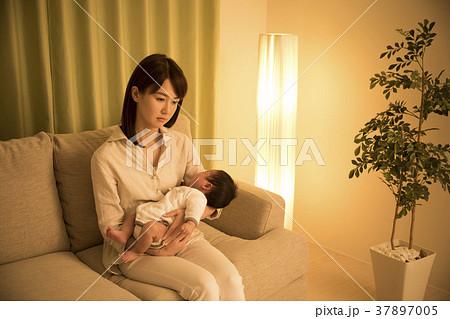 育児 37897005