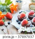 ケーキ チョコレートケーキ カップケーキの写真 37897037