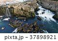 滝 曽木の滝 自然の写真 37898921