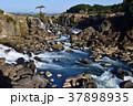 滝 曽木の滝 自然の写真 37898935