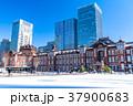 東京駅 雪 積雪の写真 37900683