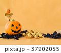 ハロウィン カボチャ お菓子 おもちゃカボチャ ハロウィーンイメージ 37902055