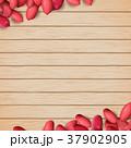 ピーナッツ 落花生 バックグラウンドのイラスト 37902905
