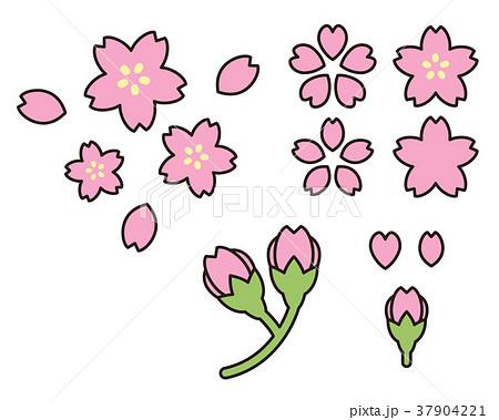 桜の花びら・つぼみのイラスト 37904221