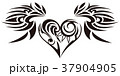 37904905