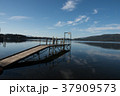 テ・アナウ湖 湖 自然の写真 37909573