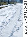 歩道 雪 積雪の写真 37910438