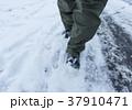 雪 積雪 冬の写真 37910471