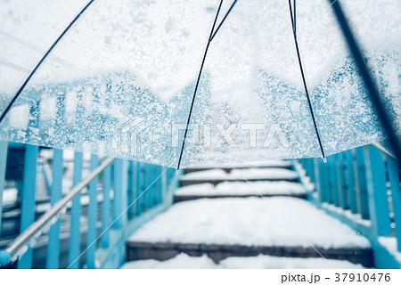 雪の日 37910476