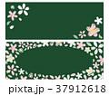 桜 フレーム ベクターのイラスト 37912618
