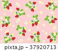 苺 果物 果実のイラスト 37920713