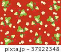 苺 果物 果実のイラスト 37922348