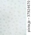和紙 蓮柄 パターン 37924670