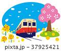 春 桜 菜の花のイラスト 37925421