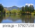 金鱗湖 風景 自然の写真 37927158