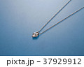 アクセサリー 宝石 ファッション ダイヤモンド ネックレス  37929912