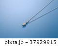 アクセサリー 宝石 ファッション ダイヤモンド ネックレス 37929915
