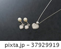 アクセサリー 宝石 ファッション ダイヤモンド ネックレス イヤリング ハート 37929919